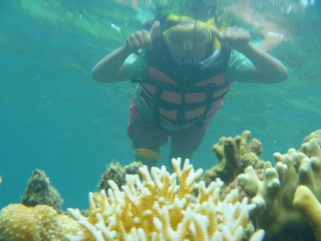 Coral Garden - Coron Palawan