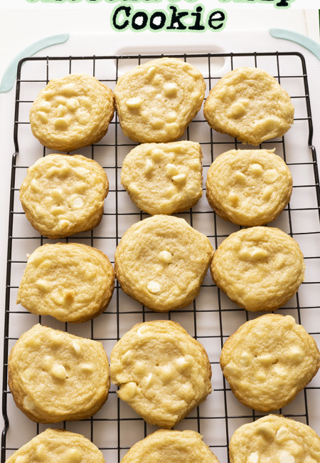 Guys, this is theEASIEST WHITE CHOCOLATE CHIP COOKIE you can make. It is soft and melt in the mouth, not too sweet and simply filling. It will satisfy your sweet tooth craving.