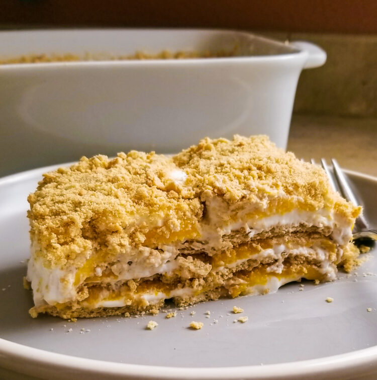 This FILIPINO MANGO FLOAT CAKE is a Filipino version of ice box cake and it's famous as potluck recipe for parties. Replace the mango with different fruits.